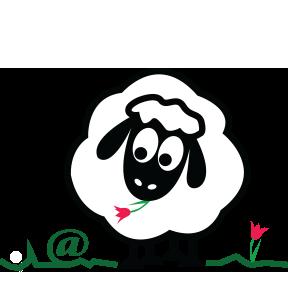 mouton_contact2